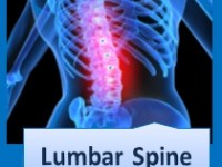 A graduate's guide: The lumbar spine