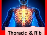 A graduate's guide: The thoracic spine & ribs