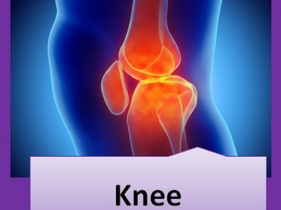 A graduate's guide: The knee