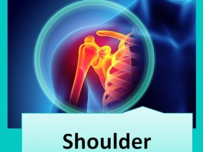 A graduate's guide: The shoulder